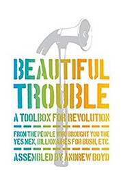 Book cover for Beautiful Trouble