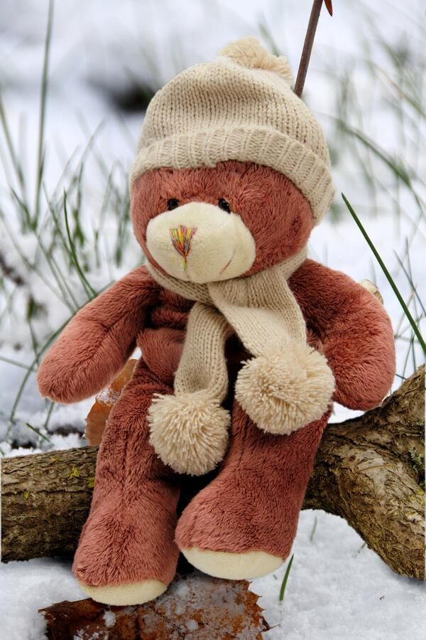 A teddy bear in a scarf and hat.