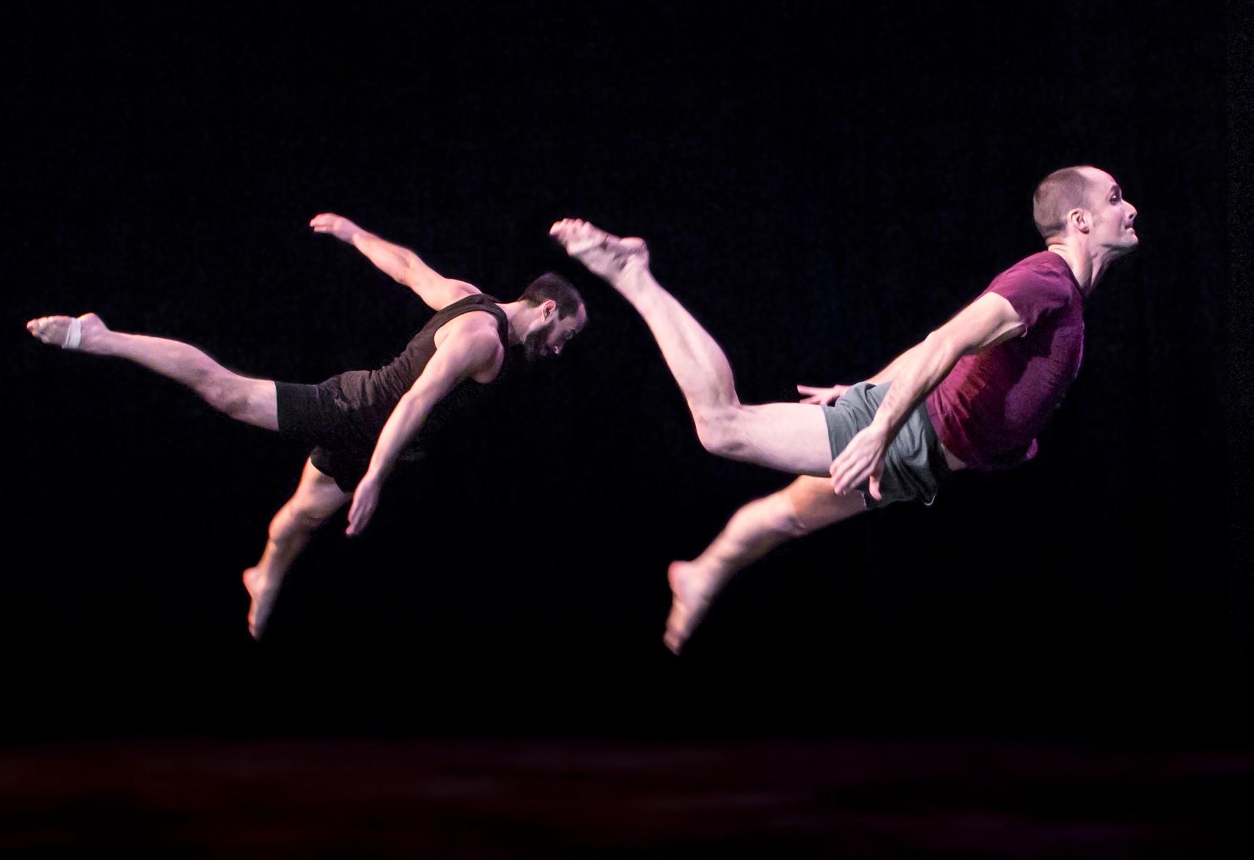 Member Spotlight: Terry Crane & Susie Williams of Acrobatic Conundrum